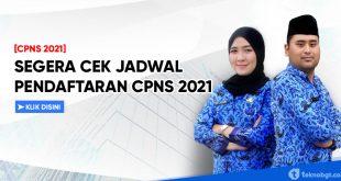 CEK JADWAL PENDAFTARAN CPNS 2021 SEMUA FORMASI
