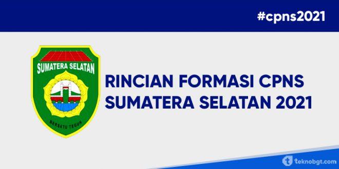 formasi cpns sumatera selatan 2021